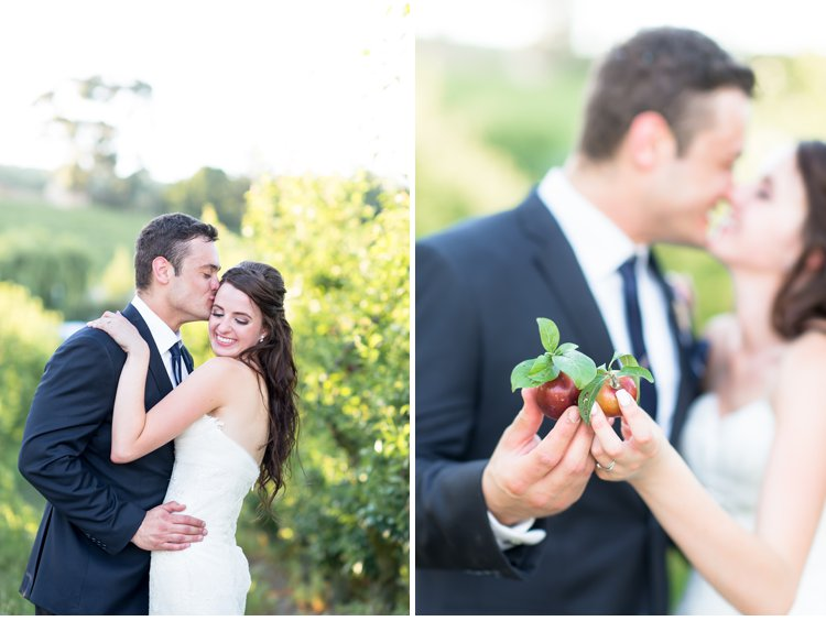 Cape Winelands Wedding, cape town wedding, brenaissance wedding, south african wedding photographer, frances & cobus, Fleur le Cordeur, Kraak Wedding Coordination, Vera Vang, Pronovias Wedding Dress, Marsel Roothman Photography_0060