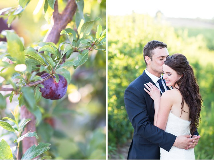 Cape Winelands Wedding, cape town wedding, brenaissance wedding, south african wedding photographer, frances & cobus, Fleur le Cordeur, Kraak Wedding Coordination, Vera Vang, Pronovias Wedding Dress, Marsel Roothman Photography_0061