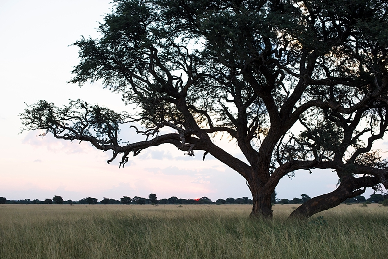 brent-lu-anne-south-african-wedding-photographer-marsel-roothman_0018
